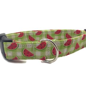 Watermelons Dog Collar